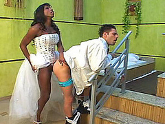 Ebon shemale bride pushing her gargantuan dig up in rub-down the gazoo of hawt groom